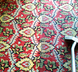 Services Kramer Carpet Cleaning